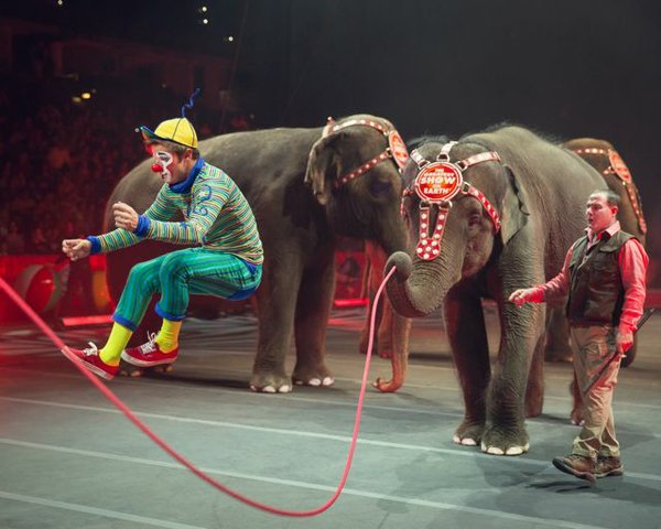 ClownandElephantJumpRope_Courtesy Feld Entertainment.jpg