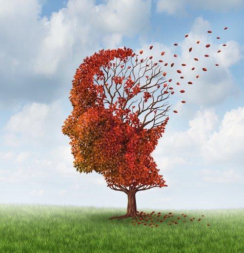 Alzheimer illustration.jpg