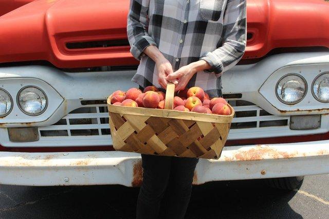 rsz_georgia_peach_truck_front.jpg