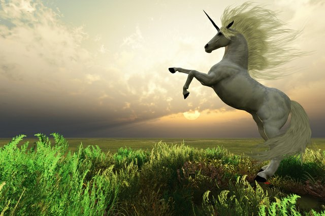 Unicorn_Thinkstock-CoreyFord.jpg