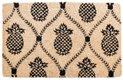 department_goods_Pineapple-Doormat_hp0916.jpg