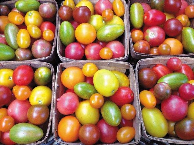 dining_purveyor_amys_organic_tomatoes_COURTESY_rp1016.jpg