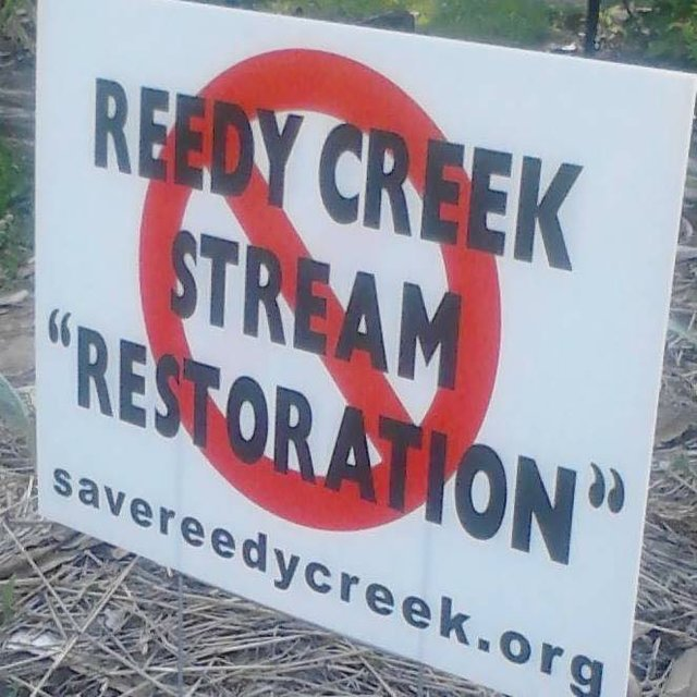 reedy-creek-restoration.jpg