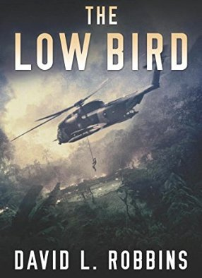the-low-bird-david-robbins.jpg
