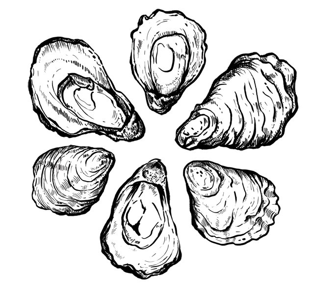 Dining_Ingredient_Oysters_KRISTY_HEILENDAY_rp0117.jpg