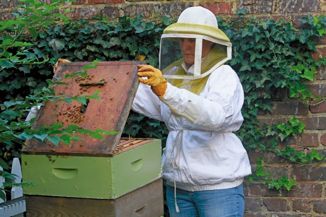 features_beekeeping__MG_4249_hp0317.jpg