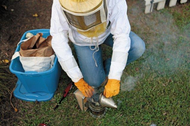 features_beekeeping__N2A9582_hp0317.jpg