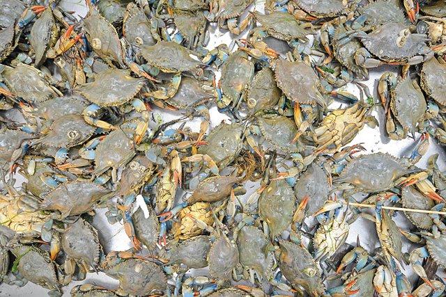 Dine_Stripmall_NewGrandMart_crab_ASH_DANIEL_dp0417.jpg