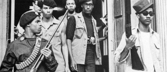 Image result for black panthers armed