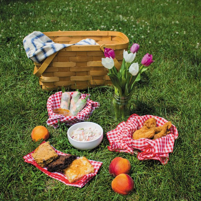 Dining_Shorts_Picnic_2_USE_MEGAN_IRWIN_rp0717.jpg