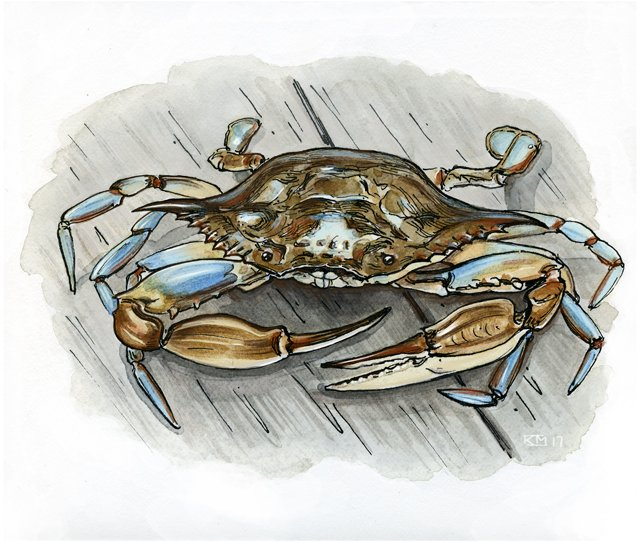 Dining_Shorts_soft-shell-crab-final_KATIE_MCBRIDE_rp0717.jpg