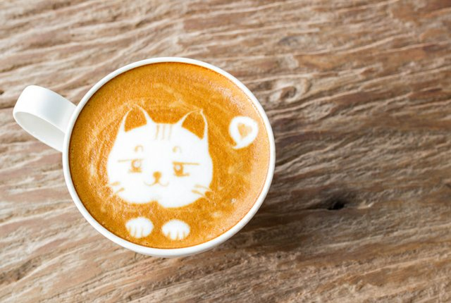 cat-coffee_Noi-Pattanan_ThinkstockPhotos-520935512.jpg