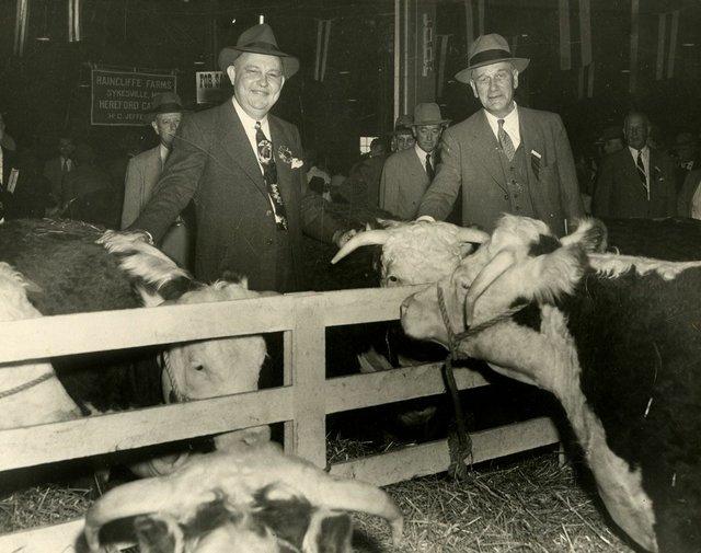 1950's Livestock photo.jpg