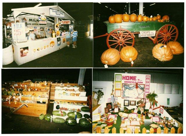 Ag at the fair.jpg