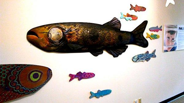 RVA Cures Zebrafish 1