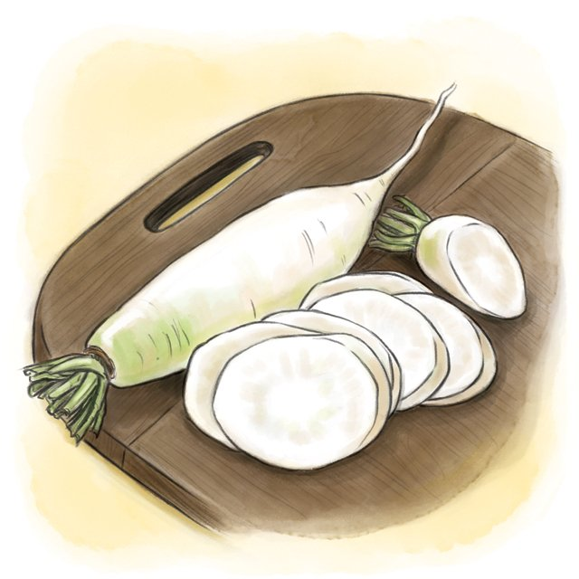 Dining_Ingredient_daikon_KATIE_BROWN_rp1017.jpg