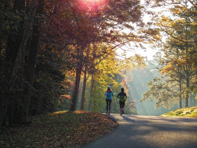 living_travel_2-Women-Jogging-uphill-into-the-Sunlight-in-NP-in-Fall-copy_rp1017.jpg