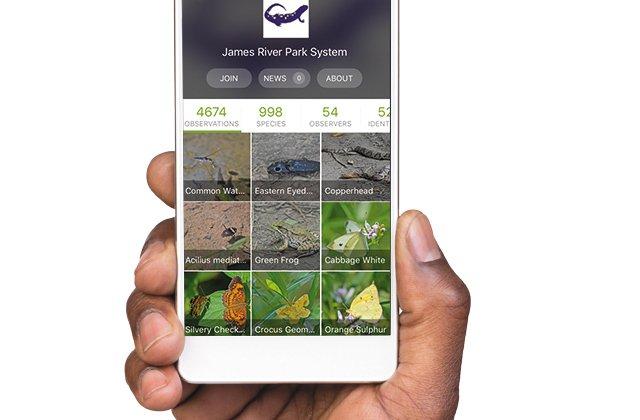 local_inaturalist_iphone_app_THINKSTOCK_rp0917_teaser.jpg