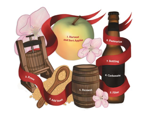 dine_apple_cider_process_VIVIENNE_LEE_dp1017.jpg