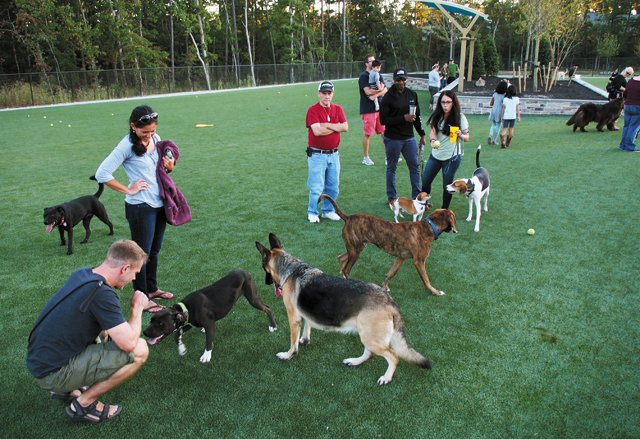 GoWest_Upfront_ShortPumpDogPark_Updated_JAYPAUL_rp1117.jpg