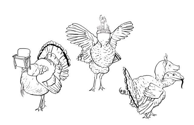 local_turkey_pardons_KRISTY_HEILENDAY_rp1117.jpg