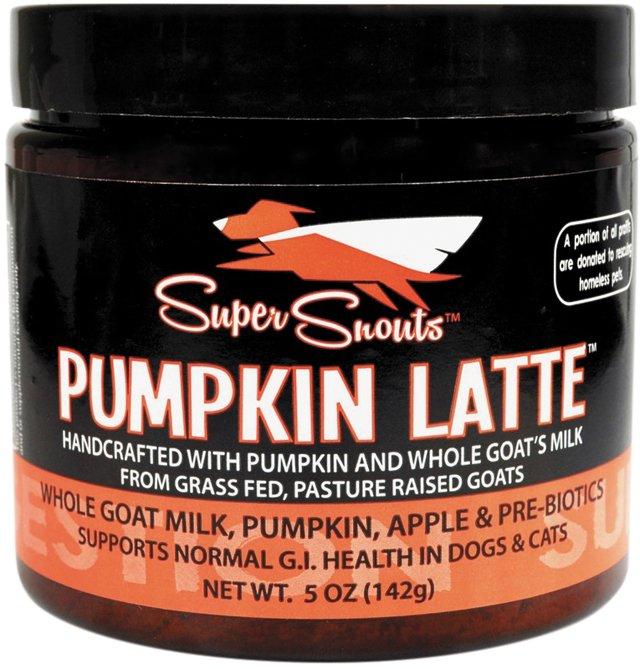 carytown_gift_guide_pets_pumpkin_latte_DIGGIN_YOUR_DOG_rp1117.jpg