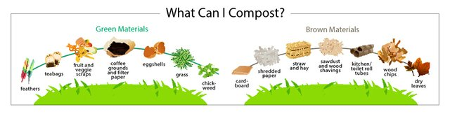 what-can-i-compost.jpg