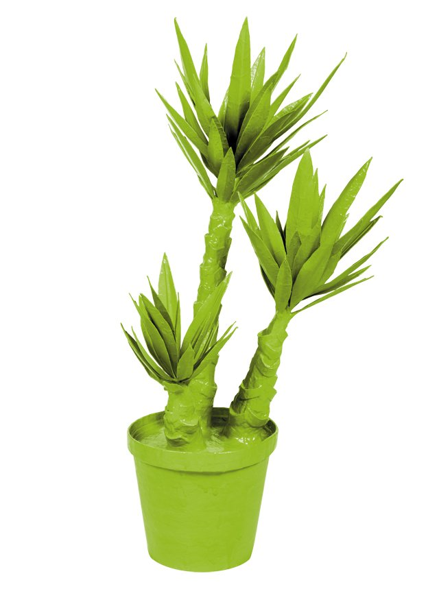 departments_thegooods_Under-250---Gift-Guide---Yucca-Plant_hp1117.jpg