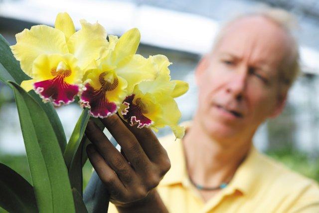 GoSouth_Orchids_ArtChadwickCloseup_rp1217.jpg