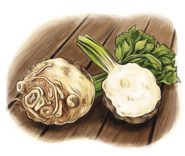 Dining_Ingredient_celeriac_KATIEMCBRIDE_rp0118.jpg