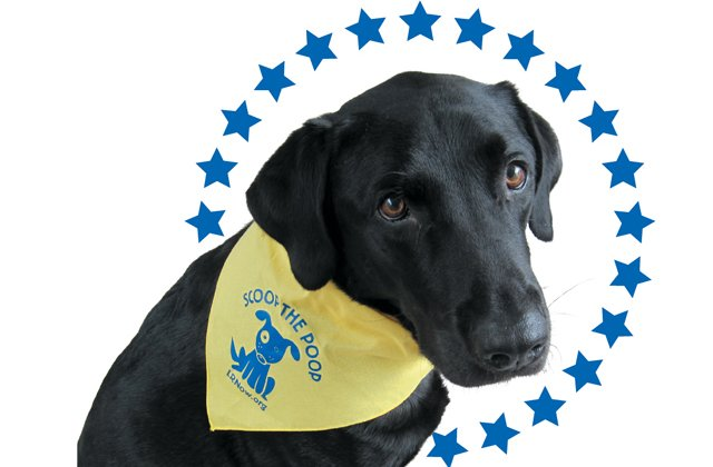 local_northam_dog_murphy_COURTESY_OFFICE_OF_GOVERNOR-ELECT_rp0118_teaser.jpg
