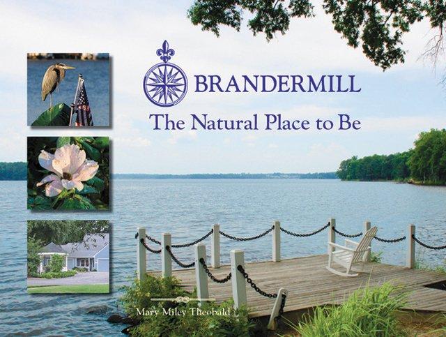 department_Q&A_Brandermill-Cover_hp0318.jpg