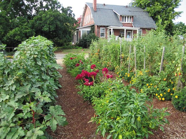 department_garden_Celosia&Pepper-Tomato-&Marigold_hp0318.jpg