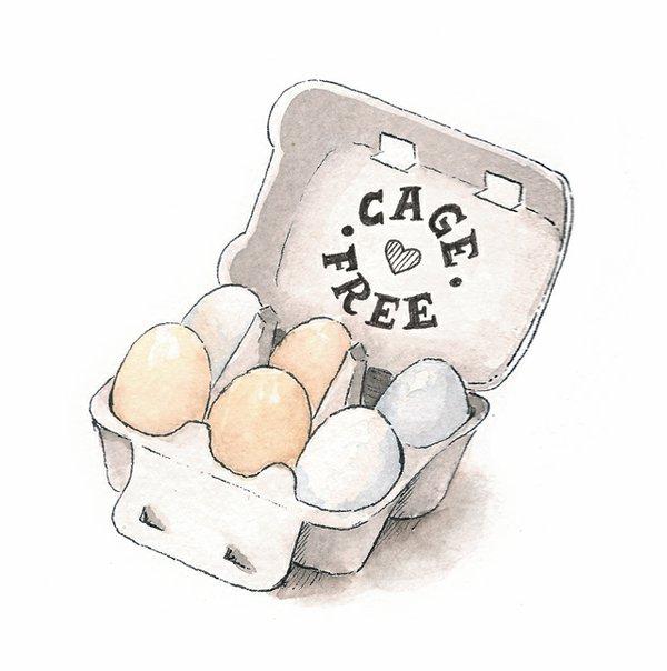 dine_egg_terms_SARAH_BARTON_cagefree.jpg