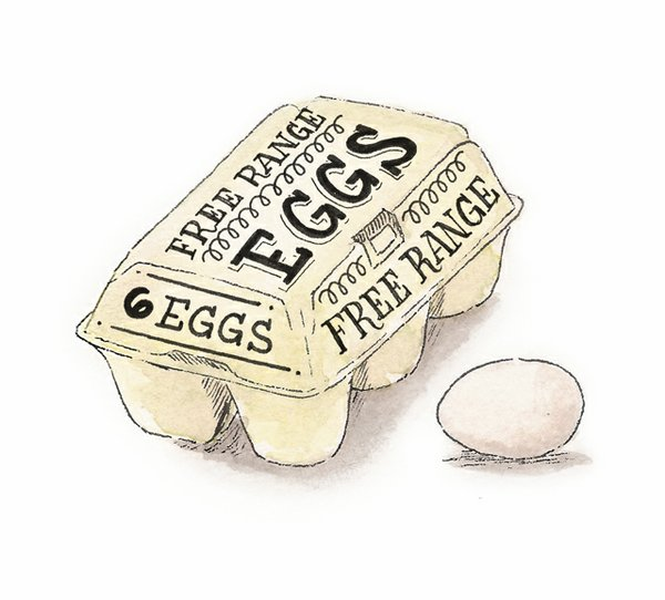 dine_egg_terms_SARAH_BARTON_freerange.jpg