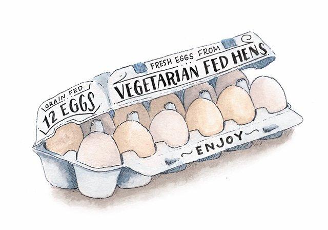 dine_egg_terms_SARAH_BARTON_Vegetarian.jpg