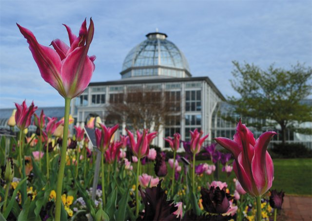 trends_rehearsals_Lewis_Ginter_Botanical_Garden_COURTESY_bp0618.jpg