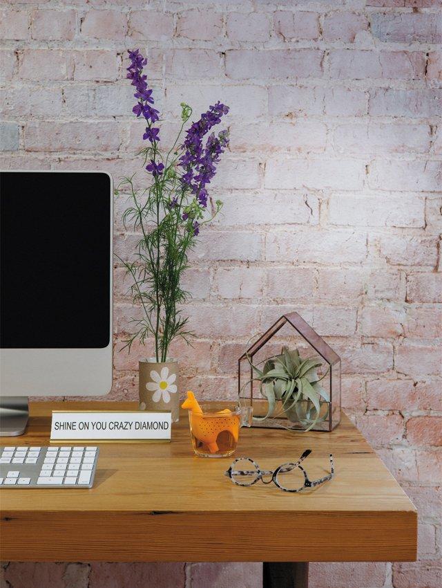 living_style_desk2_ADAMDUBRUELER_rp0818.jpg