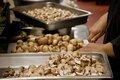 Mushrooms_FurBall_EileenMellon copy.jpg