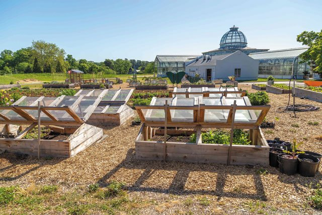 departments_garden_Cold-frames-extend-the-growing-season--Kroger-Community-Kitchen-Garden-at-Lewis-Ginter.-Richmond,-VA,-Image-by-Tom-Hennessy_hp0119.jpg