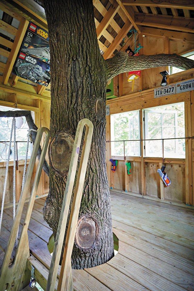 features_treehouses_6Z1A9354_SARAH_WALOR_hp0719.jpg