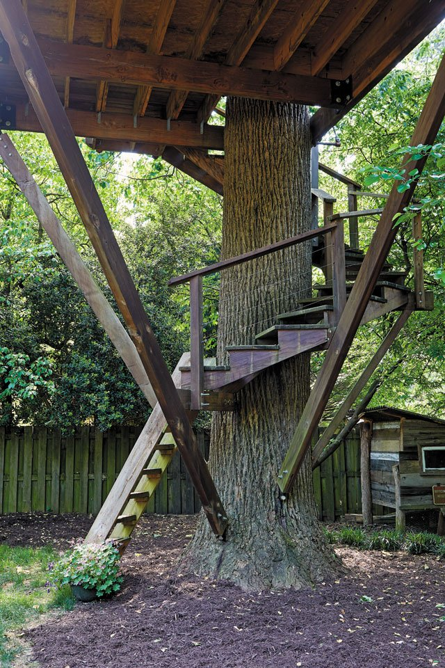 features_treehouses_6Z1A9563_SARAH_WALOR_hp0719.jpg