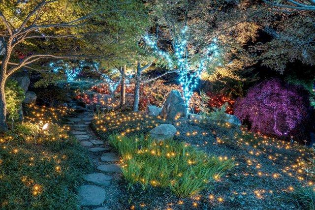 A&E_Gardenfest_By_DonWilliamson_rp1119.jpg