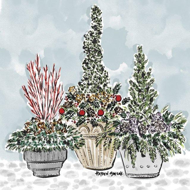 department_garden_RHOME---Nov-Dec---Container-Garden_HAYDEN_GRESAK_1119.jpg
