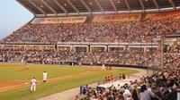 SB_Diversions_Squirrels_Ballpark_COURTESY_SB20_wide-feature.jpg