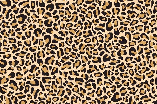leopard-print_getty.jpg