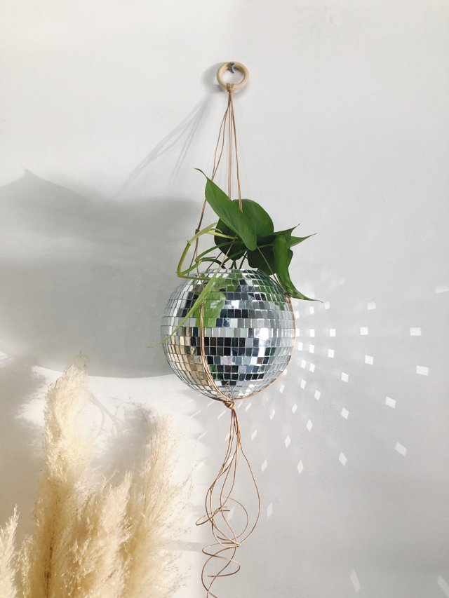 Living_Style_DiscoPlanter_COURTESY_rp0820.jpg