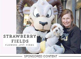 sponsored_winners-gallery_strawberr-fields_teaser.jpg