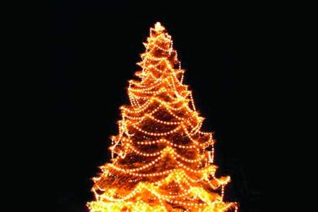 tree-lighting.jpg