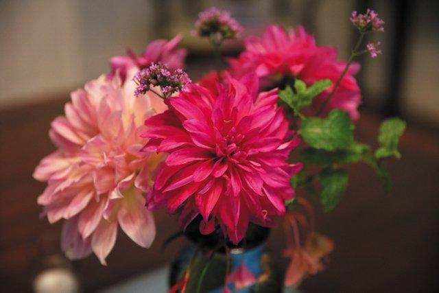 Garden_DaliaArrangement_JANECOWLES_hp0121.jpg